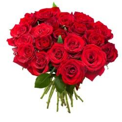 Buquê com 24 Rosas Importadas