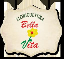 Floricultura Bella Vita